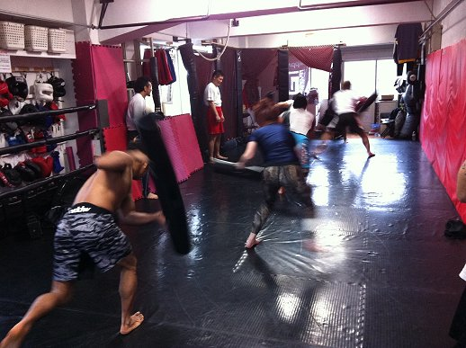viPR training1