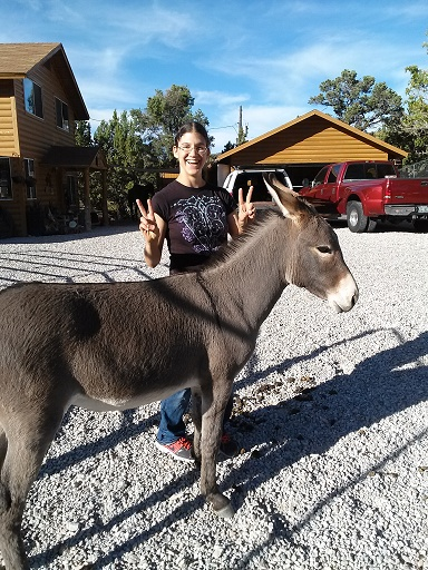 burro and roxy