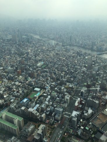 skytree view 2016